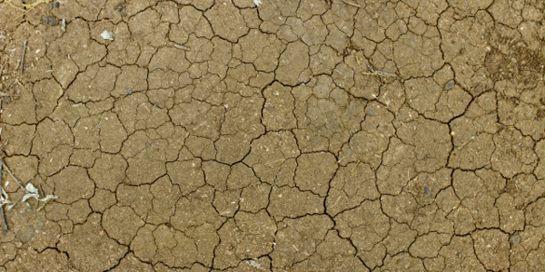 保湿しているのに乾燥してテカる?春先のインナードライ対策