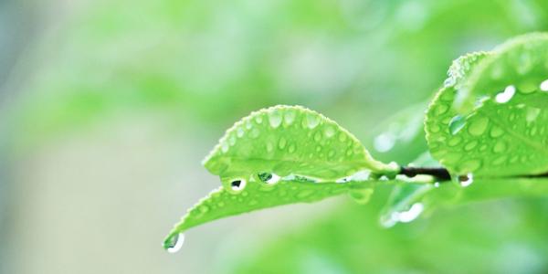 梅雨に多い「だるさ」「むくみ」の原因と対策